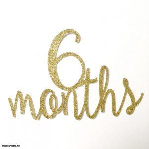 6 mesi